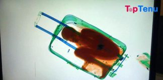 A Child in luggage