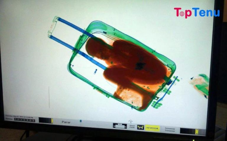 Top 10 Weirdest Things Found By Airport Security