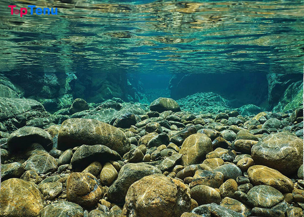 Spectacular Underwater Rivers, Top 9 Spectacular Underwater Rivers and Lakes